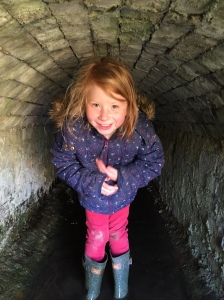 mud tunnel