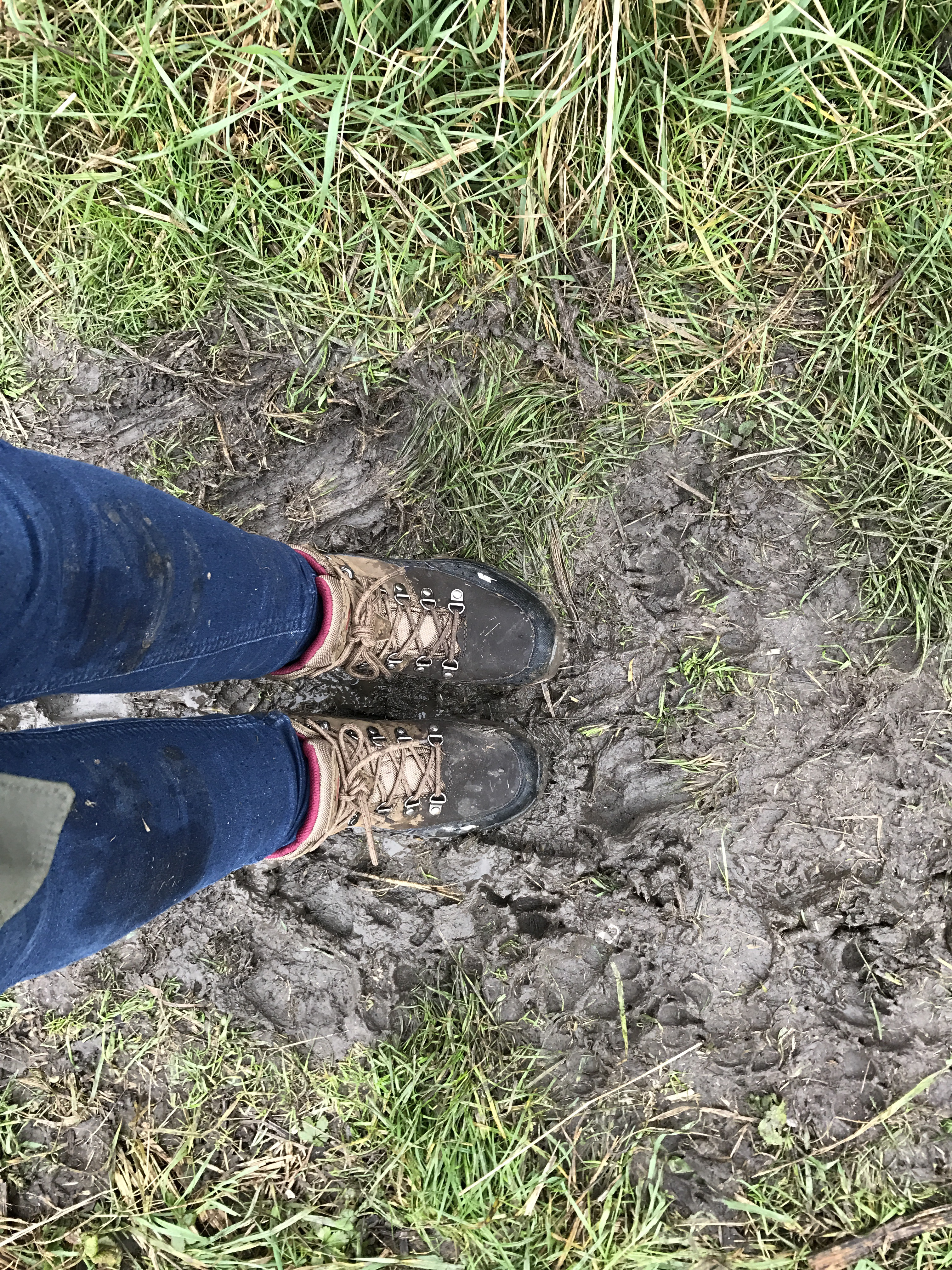 96bfaeaf6f2 Now there s a photo of boots well tested. Please excuse the muddy